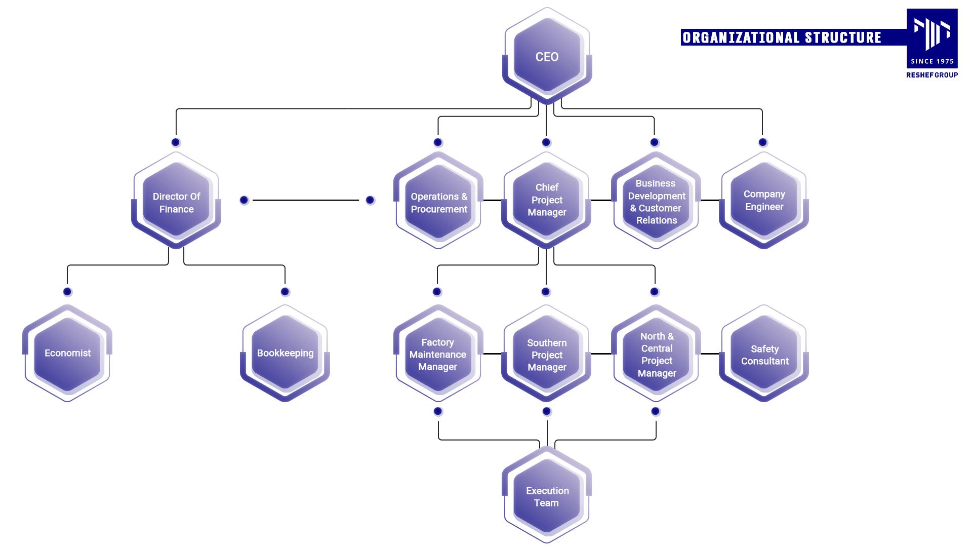 מבנה ארגוני בקבוצת רשף